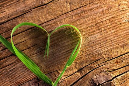 Liebesgedichte und Liebeskonzept, als Liebesmotiv und Sinnbild im Foto ein gruenes Herz aus Grashalm auf Holz-Unterlage gebogen|Fotolia
